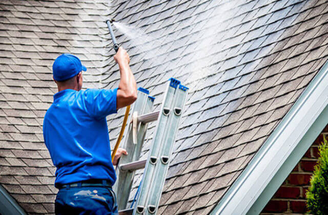 arlington heights roof cleaning